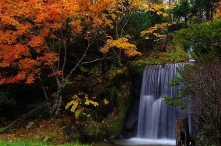 バンビの里の滝②.jpg